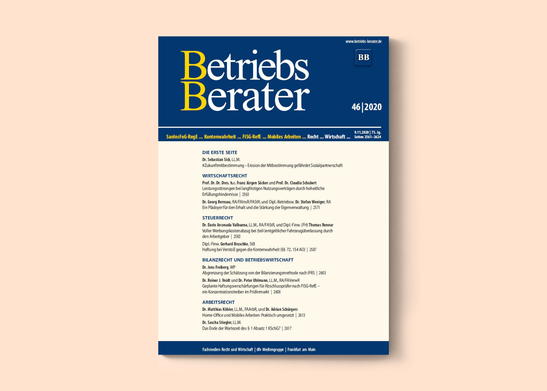 Cover Betriebsbetrater 46/20